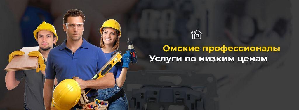 Профессионалы Омска