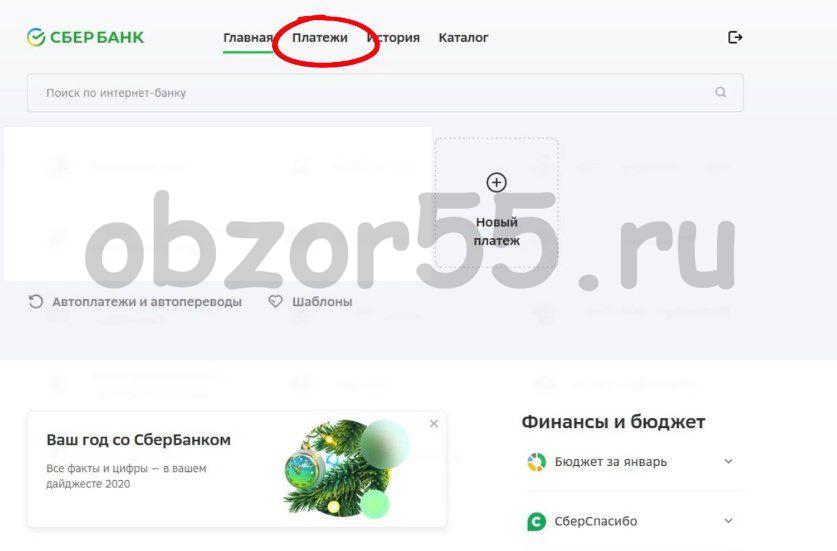 Вверху сайта ищем ссылку «ПЛАТЕЖИ» и кликаем на нее