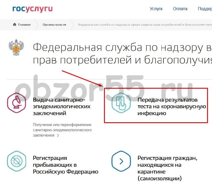 услуга «Передача результатов теста на КОВИД 19»