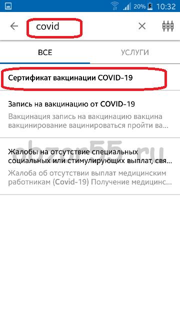 covid19 в поиске