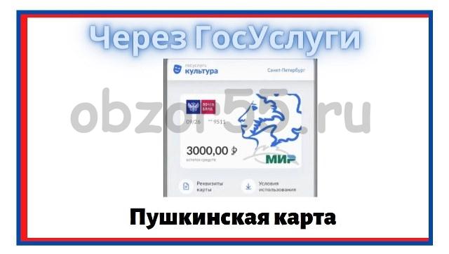 как получить пушкинскую карту онлайн госуслуги