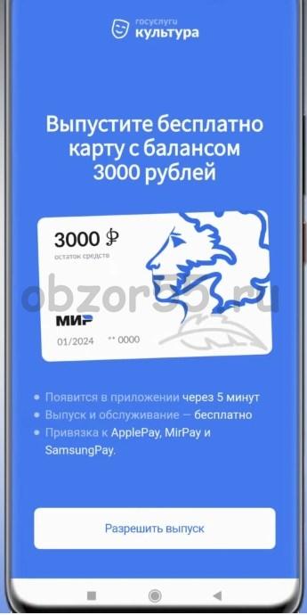 оформить пушкинскую карту онлайн